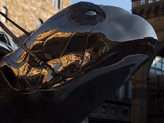 turtle (Cosimo Matteini) Tags: cosimomatteini ep5 olympus pen m43 mft mzuiko45mmf18 florence firenze piazzasignoria janfabre searchingforutopia spiritualguards turtle reflection fragmented bronze