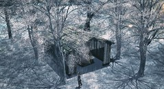Take Heart (3XIS) Tags: exterior landscape takeheart sim secondlife winter snow tree panavia photography