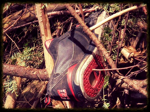HSS! ~ missing a shoe?