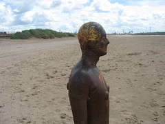 IMG_1170 (sueinblue) Tags: crosby antonygormley anotherplace