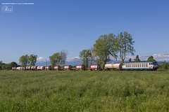 1007 - 652_069 + CISTERNE E CASSE MOBILI A MIGLIARINO ( TRENO TAVAZZANO - ROSIGNANO) 14-5-2013 FULL HD (Frank Andiver TRAIN IN TUSCANY) Tags: italy train canon frank photo italia photos rail trains tuscany rails locomotive toscana treno tigre fs trenitalia treni ferrovie binario 652 e652 fullhd andiver frankandiver trainintuscany