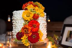 Ellie+Jamie-1136 (Molly DeCoudreaux) Tags: wedding jamie marriage ellie mendocino philo