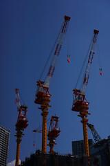 DSC08839.jpg (ntstnori) Tags: 35mm tokyo construction crane sony  f18 koto toyosu    e35mmf18oss