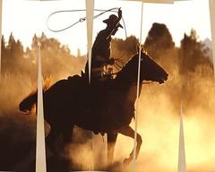 Roper Silhouette Fraction (haleyrichardson) Tags: horse silhouette photoshop photography spurs google cowboy boots dusk edited rope filter western chopped dust fraction cowboyhat rider wildwest saddle roper horseandrider spus