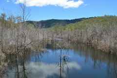On reflection (jenni747) Tags: blue trees lake nature water clouds reflections australia the4elements