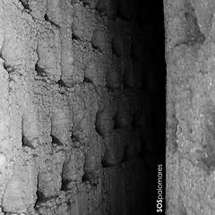 Palomar 45. Villarrín de Campos. 03 (SOSpalomares) Tags: palomar zamora tierradecampos villarríndecampos sospalomares