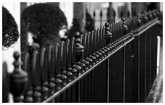 Marlow - Railings (Maw*Maw) Tags: street blue bw white black photoshop canon eos 50mm mono high ps filter marlow 50d cs5