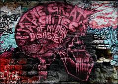 PWCCA + Gorellaume (Chrixcel) Tags: pink streetart paris rose skull brains graff vanité squelette cervelle gorellaume