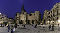 Plaza of the Cathedral (Glenn Shoemake) Tags: barcelona cathedral canonef1635f28lii