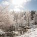 Neve no Parque Natural do Alvão-7