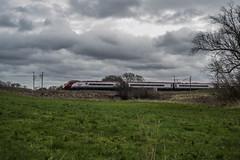 Scotland Bound (DM47744) Tags: railroad west electric train coast gate sandy transport railway trains class virgin preston railways 390 mainline pendolino wcml