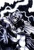 tumblr_n3hhalyHPc1t0375do1_500 (Born Magnetic Allah) Tags: boy robin dark wonder batman knight batgirl crusader catwoman boywonder caped