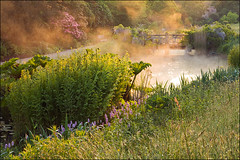 Wisley (Lee Beel) Tags: england mist lake green english water gardens canon garden spring pond wisley rhswisley manfrotto englishgarden rhs 2014 beel gardenphotography leebeel rhsleebeel