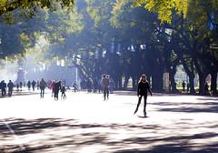 Calle recreativa Rosario