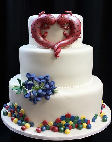Cakes & Desserts — Market Salamander