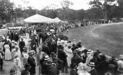 Crowds at the Stanthorpe showgrounds