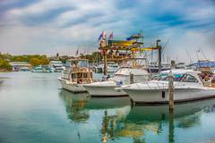 _09A3539 - Nelson Bay Marina Port Stephen (Gil Feb 11) Tags: marina nelsonbay portstephen canon5dmkiii