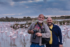 Camargue - Flamants roses (xsalto) Tags: camargue france flamantsroses flamingos