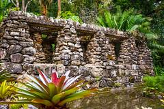 DSC_5425 (sergeysemendyaev) Tags: 2016 rio riodejaneiro brazil jardimbotanico botanicgarden     outdoor nature plants    green  rocks  beauty nikon