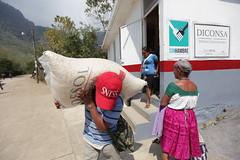 VENTA DE MAZ EN TIENDA COMUNITARIA (diconsa_mx) Tags: diconsa maz tienda comunitaria