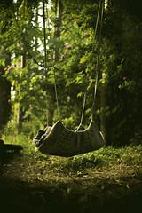 Freedom game. (ehanoglu) Tags: swing swinging fly freedom child children play free nature green giresun ebinkarahisar ebin turkey trkiye salncak sallanmak emrehanoglu emrehanolu emre hanolu