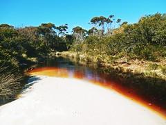 Creek to the beach in Bay of fires - Tasmania - Australia (pacoalfonso) Tags: pacoalfonsocom travel australia tasmania creek bay fires landscape beach