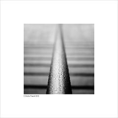 step rail (Charlie Pragnell) Tags: abstractarchitecture abstract liverpoolsplash16 liverpoolsplash olympuseurope olympusuk blackwhitefineart blackwhitefineartphotography squareformat droplets wwwcharlespragnellphotographynet