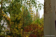 DSC_1389 (andrzej56urbanski) Tags: chernobyl czaes ukraine pripyat prypeć prypyat kyivskaoblast ua