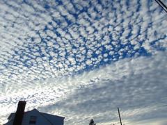 DSC01232 (StormJunkie2015) Tags: clouds sky weather skies altocumulus cumulus alto meteorology