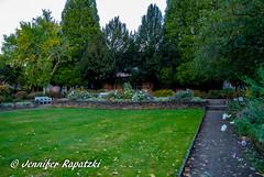 so viele blumen (Bernsteindrache7) Tags: autumn sony alpha 100 color flora fauna flower garden bloom blossom blume outdoor landscape park dsseldorf germany nrw