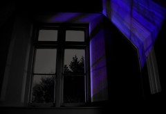 Lord, Imma lose my head here (Gareth Priest) Tags: selectivecolour window tree night dark silhouette mood atmosphere mysterious feeling emotion spiritual cross light reflection shadow