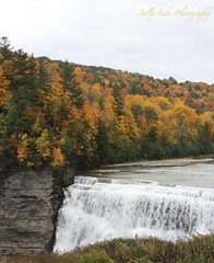 IMG_9556 (Sally Knox Sakshaug) Tags: letchworth state park new york fall autumn october colors leaf leaves orange yellow stone grey gray brown green red beautiful pretty scenic gorge ravine cliff wall edge side river water valley deep crevice waterfall white spectacular falls beauty middle large major mighty strong powerful impressive awe inspiring genesee portagecanyon