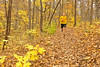 Runnin' Trail (dlholt) Tags: dan sports flickr running trailrunning lakegeode geodestatepark danvilleiowa autumn fall
