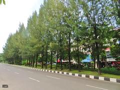 Jalan HR. Muhammad (Detta Priyandika) Tags: jalur pejalan kaki pedestrian way walk sidewalk surabaya pembangunan kota city urban street road