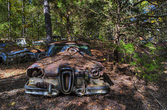 Paradise Rust (2) (One_Track) Tags: rust rusty car edsel abandoned alabama cars tree forest hdr