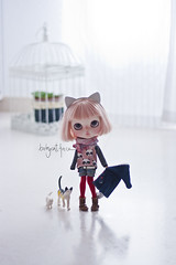 """""""I don't think it's too cold outside, I don't want to wear my coat"""" (_babycatface_) Tags: blythe blythecustom babycatfacedollies babycatface blythedoll custom customblythe customdoll cute cutiepie doll dollphotography toy toyphotography takara takaradoll takaratoy"""