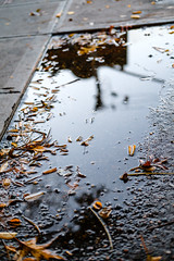 firstshoot_27.jpg (gaswirth) Tags: reflection naturallight chintown midtown street puddlereflection puddle nyc candacesimon