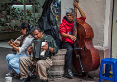 2016 - Mexico - San Luis Potosi - Trio (Ted's photos - Returns late December) Tags: 2016 cropped mexico nikon nikond750 nikonfx sanluispotosi tedmcgrath tedsphotos tedsphotosmexico vignetting streetscene street musicians insturments playing accordian basefiddle guitarplayer guitar rubens rubensaccordian people buskers hoodie trio three seating seated sitting stool sanluispotosiphotos bassist strumming keyboard squeezebox