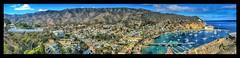Catalina Island (shinnygogo) Tags: view holiday destination travel island california vista waterfront harbor panorama avalon catalina
