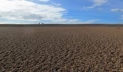 On Chesil Beach (pefkosmad) Tags: chesilbeach dorset portland weymouth jurassiccoast shingle pebbles beach unesco worldheritage site novel onchesilbeach ianmcewan sky horizon geography holiday vacation vacances holibobs