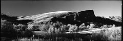 Kodak Tri-X 400 (Film-Love) Tags: 120film 120220film 16bitgrayscale 2016 201611 31aspectratio 68f60min 6x17 analogcamera analogimages bw bwnegativefilm bwchemistry bwfilmchemistry bwnegativescan bwscan bw091 bwksmcpolmrcnano blackwhite darkroom darkroomequipment epsonv750 epsonv750pro experiment expiredfilm film filmchemistry filmformats filmprocessing filtercombos filters fujiebcfujinonw180mmf67 fujigx617 fujifilm fujinon180mmf67 gx617panorama homedevelopfilm irfilmirfilter irinfraredfilters kodakbw kodakhc110dilution1100 kodakhc110developer kodakkodafixsolution kodaktrix400 kodaktrix400400tx kodakchemicals kodakimages kodakindicatorstopbath lenses manualfocuslenses mediumformat nikon nikonr60 pano panorama panoramicphotography patersonsupersystem4 photographicchemistry photography photos polarizerfilter primelenses r60 r60091cpol scanner scans schneideroptics years f67lens filmexpired1982 standdevelopment teleprimelenses