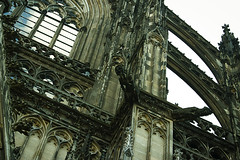 Cologne_gargouille (Myriane Huard) Tags: gargouille allemagne dom kln cologne cathedrale