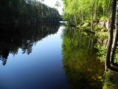 The northern part of Lake Yläinen Toriseva (Virrat, 20140628) (RainoL) Tags: 2014 201406 20140628 finland june lake ph pohjoishäme reflection summer toriseva virrat yläinentoriseva
