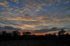 Neat Sunset 2 (thefisch1) Tags: sunset color colorful sky cloud alto cumulus horizon tree line geese flying formation nikon kansas d700