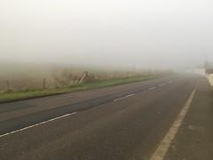 Fog Day (stuartharnott007) Tags: 2016 jersey line fog phonephotography photography stuartarnott