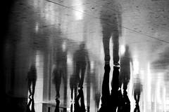 Blurry (Wilson Au | ) Tags: hongkong tungchung blackandwhite monochrome reflection shadow fujifilmxe2 upsidedown xf1855mmf284rlmois    citygate fujinon