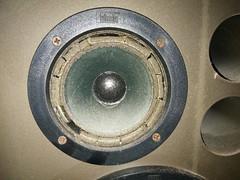 2016-11-06--120530 restauro casse (MicdeF) Tags: altoparlante cassa casse casseacustiche indianaline loudspeaker midrange restauro riconatura sospensione sospensioni woofer geo:lat=4193466523 geo:lon=1254016936 geotagged