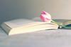 Keeping it Simple 2 (Elizabeth_211) Tags: naturallight 2470mm pink tulip flower book stilllife