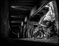 (mkberquist) Tags: pentax6x7 takumar takumar55mmf35 rodinal standdevelop blackandwhite ultrafinextreme400 ultrafinextreme 120film mediumformat 6x7 pentax tunnel