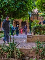 17112016-senza titolo-234 (...divista) Tags: 2017 canarie crociera marocco msc portogallo spagna